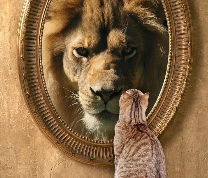 Как стать успешным и уверенным в себе